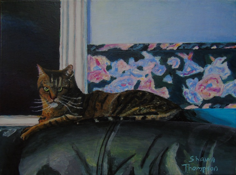 pepsi_the_cat