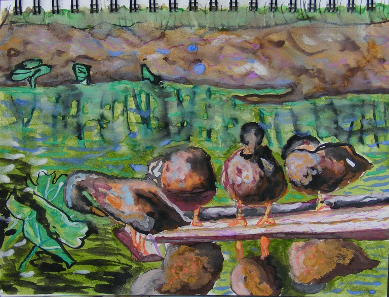 ducks_on_a_log_watercolour