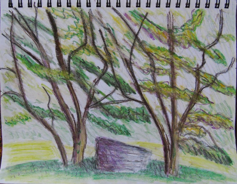 crabapple_trees_9x12_ul
