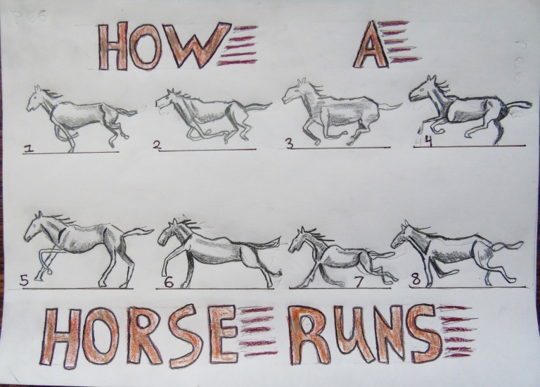 how_a_horse_runs_ul