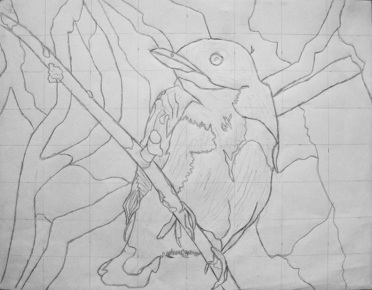 tree_swallow_drawing