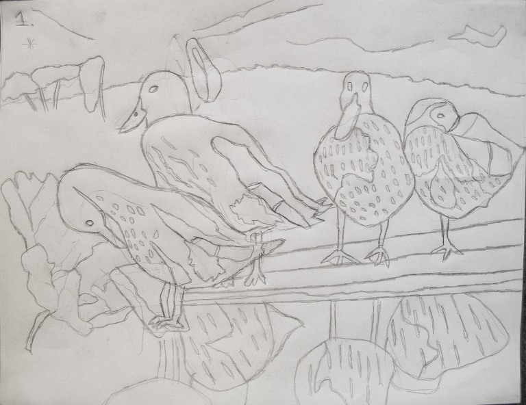 ducks_on_alog_drawing