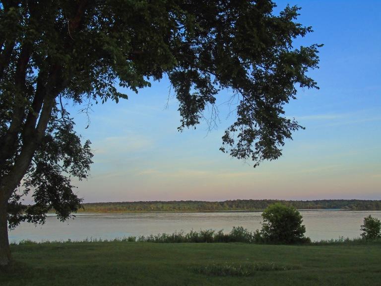 river_view_tree_ul