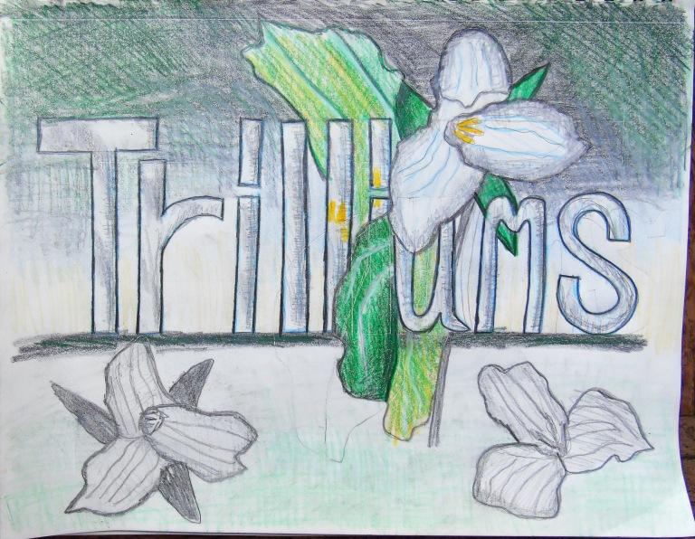 trilliums_ul