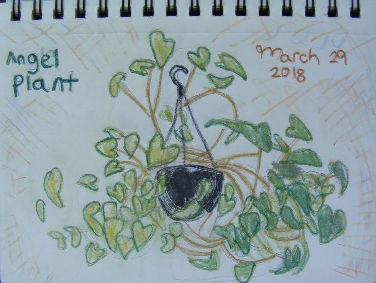 angel_plant_ul