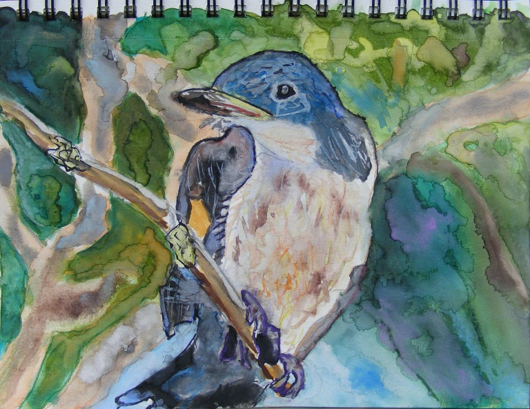 tree_swallow_small_watercolour_ul