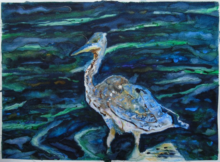 scruffy_heron_watercolour_ul