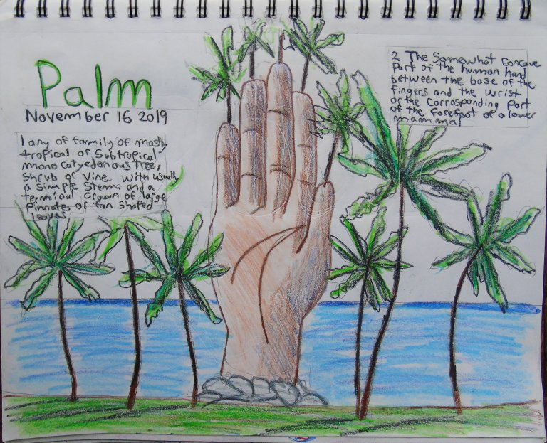 drawing_a_day_palm