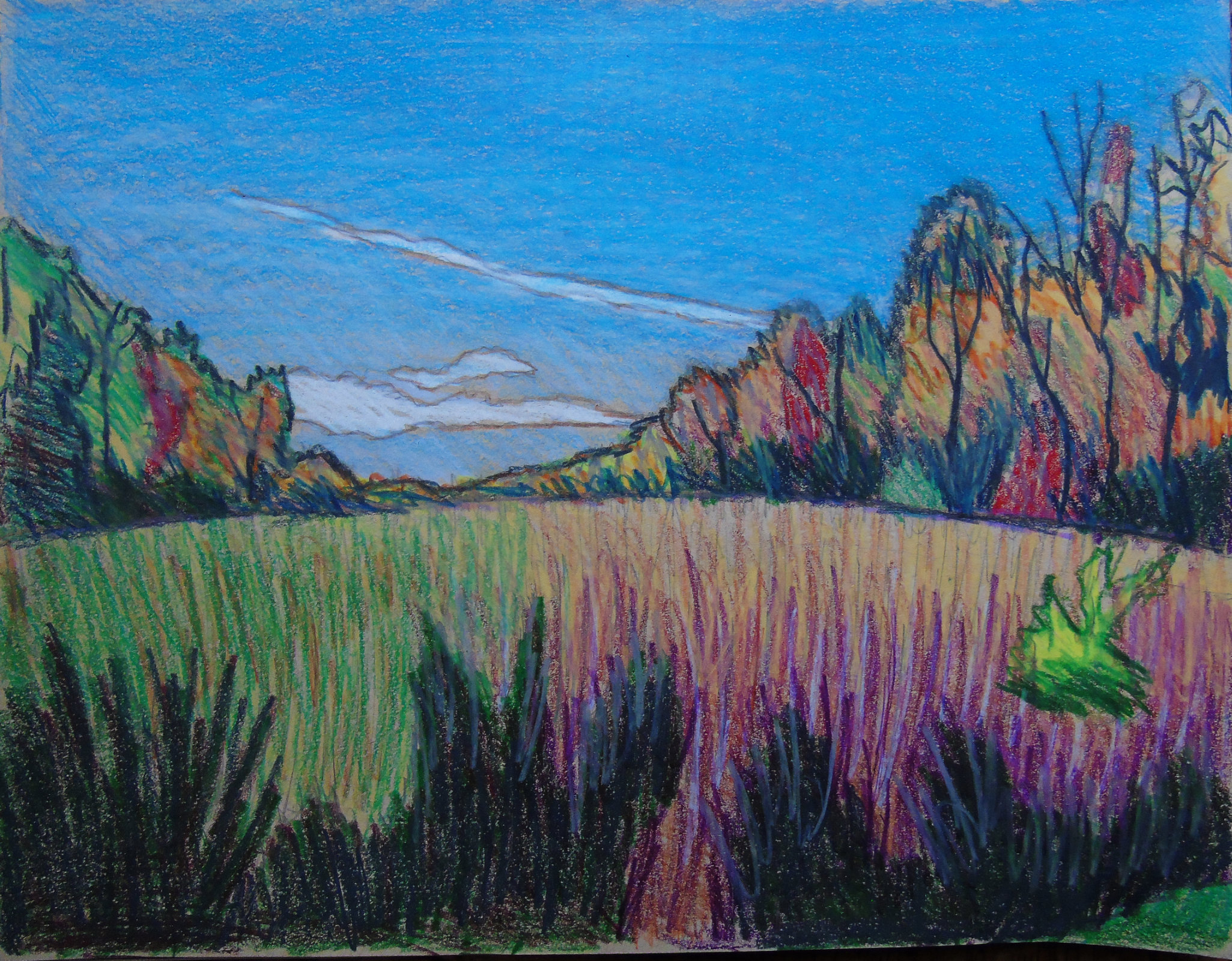 Guindon swamp toned sketchbook