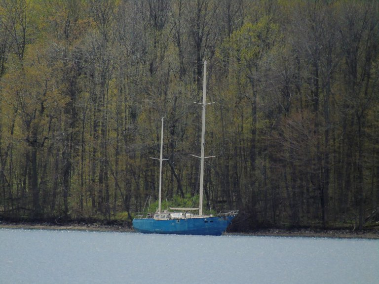 Blue Sailboat 1
