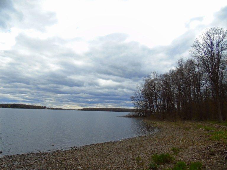 Cloudy bay 2