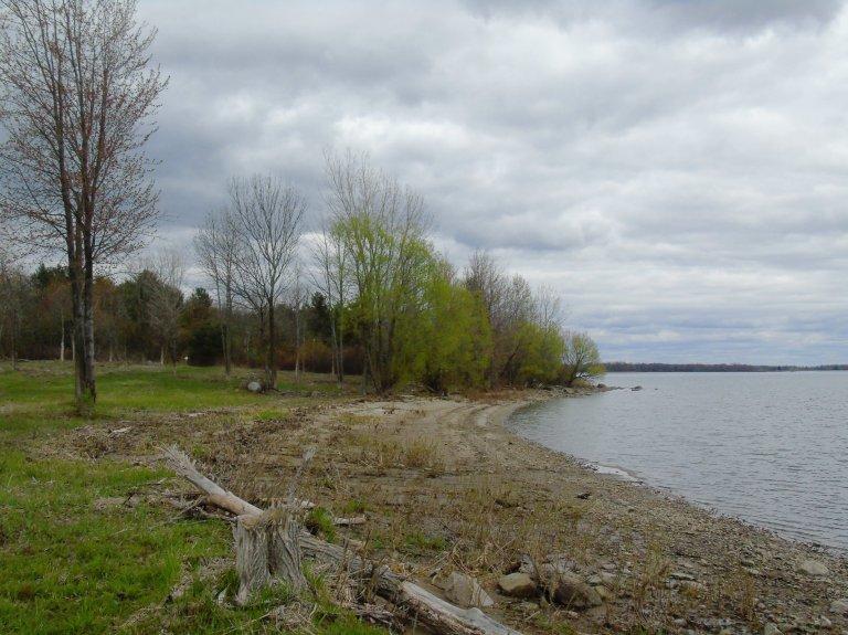 Cloudy bay 4