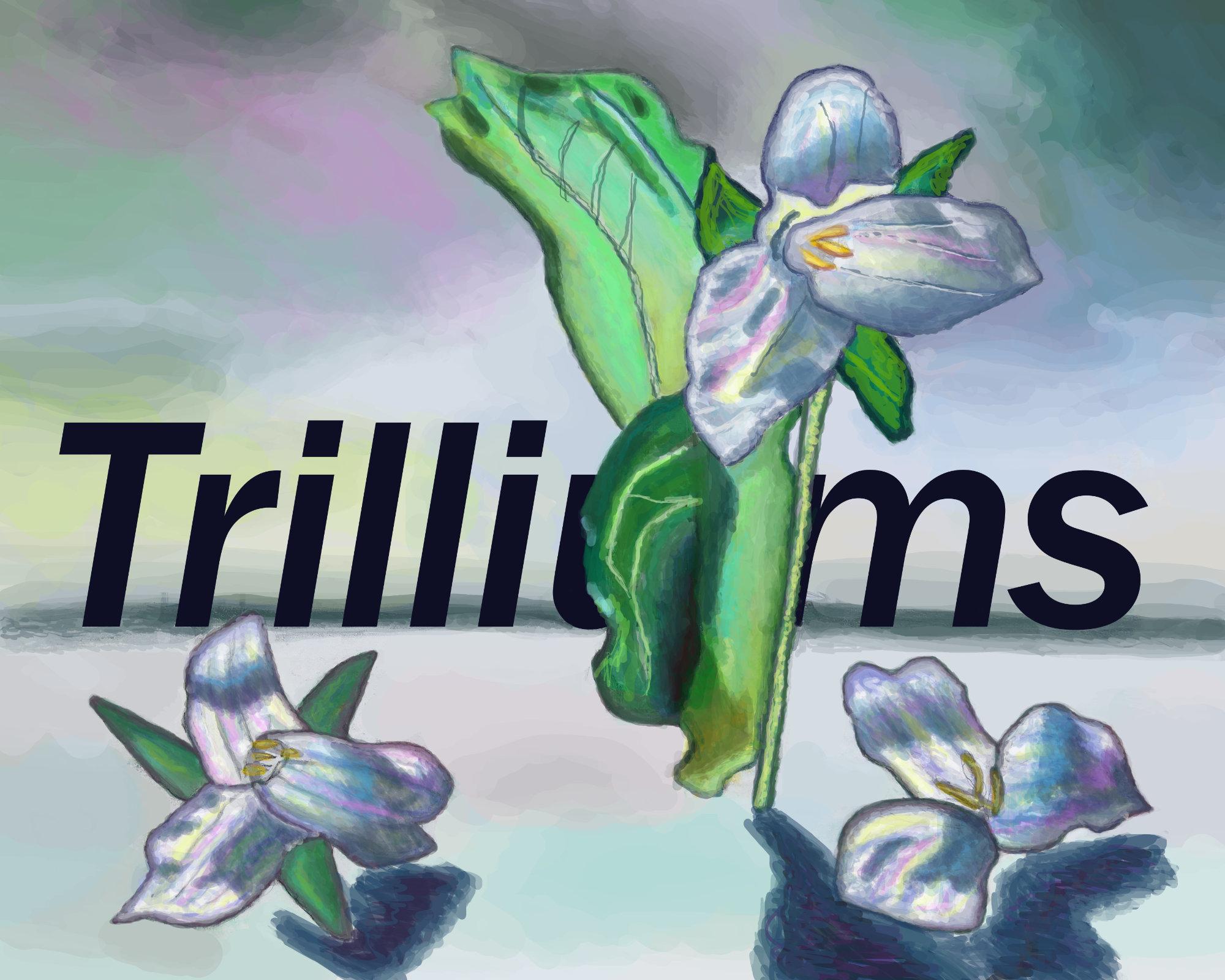 Trilliumsv7_Text_proof_ul