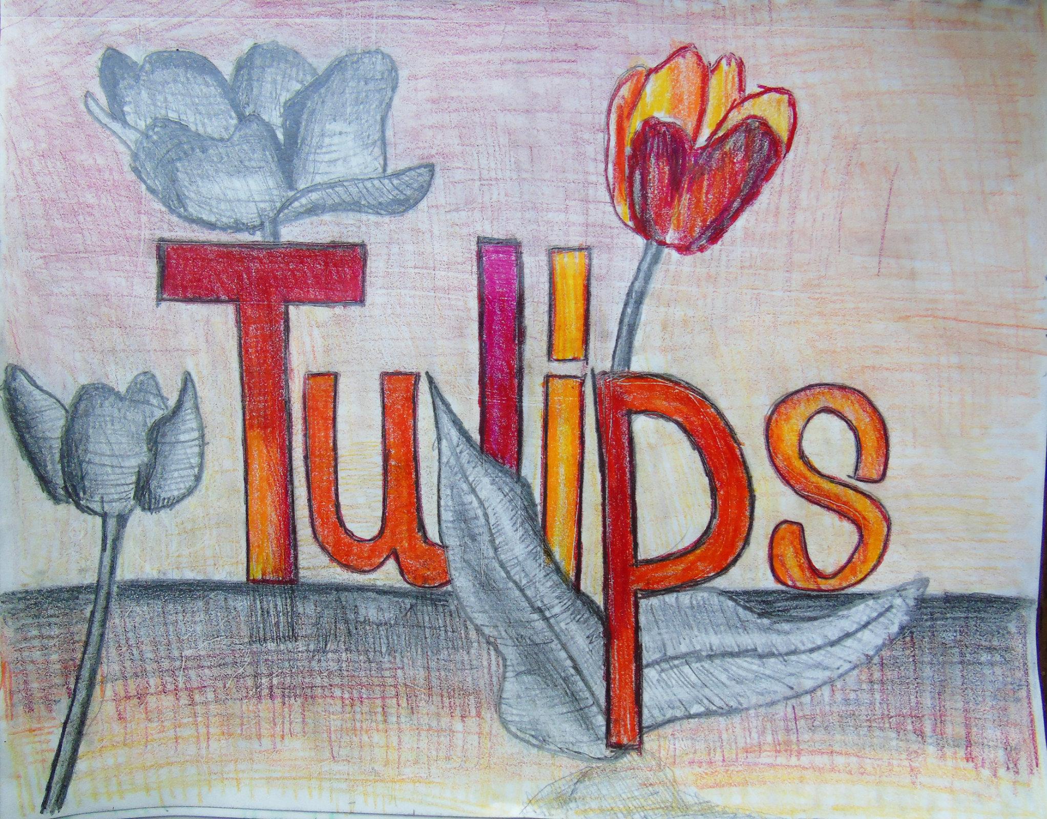tulips 2_ul
