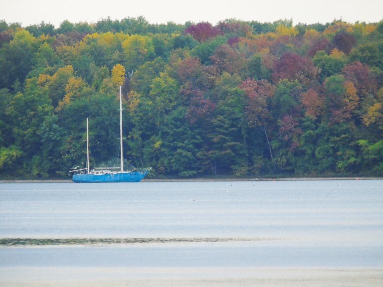 sailboatfall2_ul